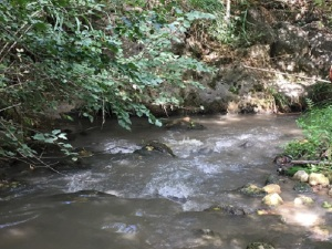 40378_fiume-oreto