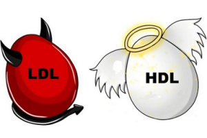 ColesteroloHdl-ldl
