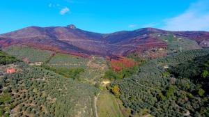 Monte Pisano - Foto Michele Camelo © FAI - Fondo Ambiente Italiano