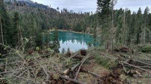 lago di carezza dopo i danni