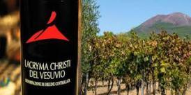 Lacryma Christi e vigneti