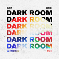 COVER_Dark Room Max Brigante RMX B