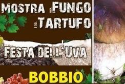 mostra fungo tartufo bobbio