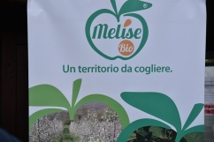 Festa-della-Mela-di-Castel-del-Giudice-Credit.-Emanuele-Scocchera-4