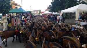 Festa_Rurale_Cevrin_Coazze_3