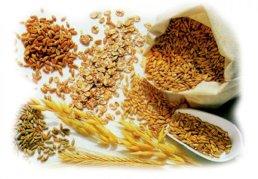 cereali integrali