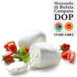 mozzarella bufala dop