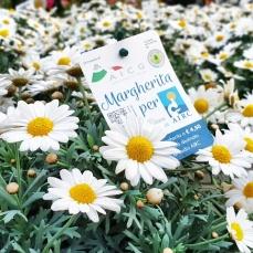 Margherita per Airc_2019