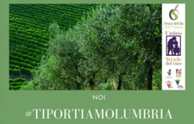 home_portiamolumbria